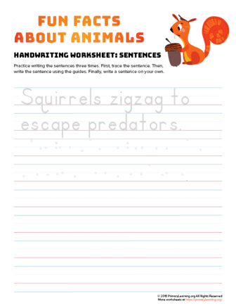 sentence writing squirrel