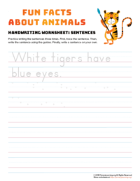 sentence writing tiger