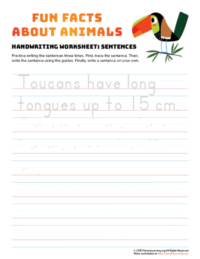 sentence writing toucan