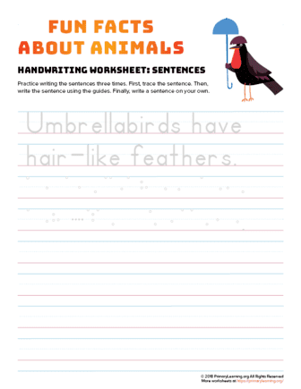 sentence writing umbrellabird