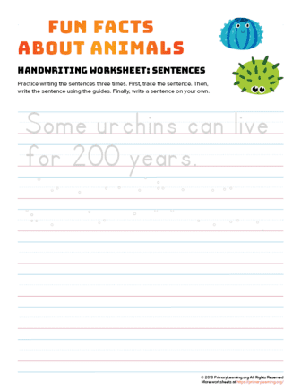 sentence writing urchin
