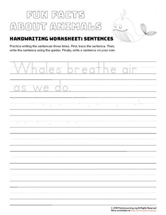 sentence writing whale