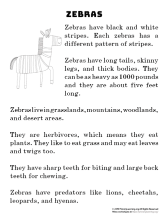 Zebra Reading Passage | PrimaryLearning.org