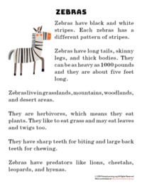 zebra reading passage