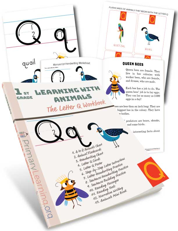 letter q handwriting