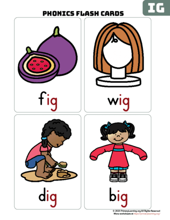 ig word family flash cards