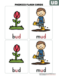 ud word family flash cards